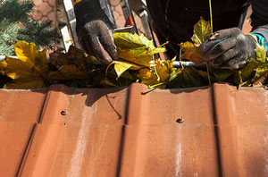 Gutter Cleaning Cowes Isle of Wight
